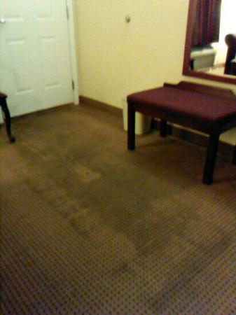 Baymont Inn & Suites Macon I-475: stained carpet