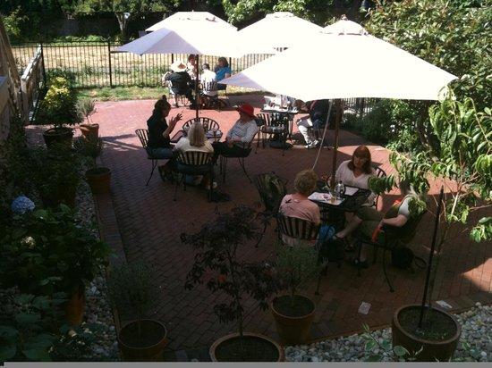 Pippa's Real Tea: Dog friendly courtyard garden.