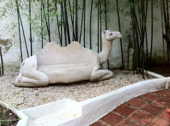 El Cobijo de Vejer: Camel seat