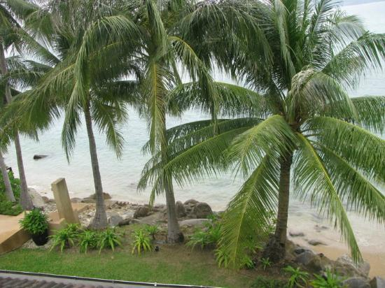Amari Phuket: view from room