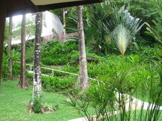 Amari Phuket: view from the hallway stair