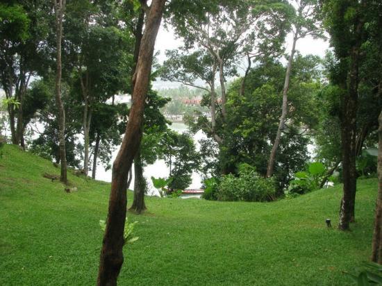 Amari Phuket: Hotel view