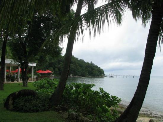 Amari Phuket : view from hotel area