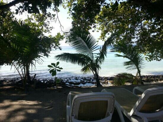 Kuramathi Island Resort: vu des beach villa jacuzzi