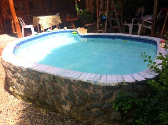 เนเจอร่า วิสต้า: dip pool