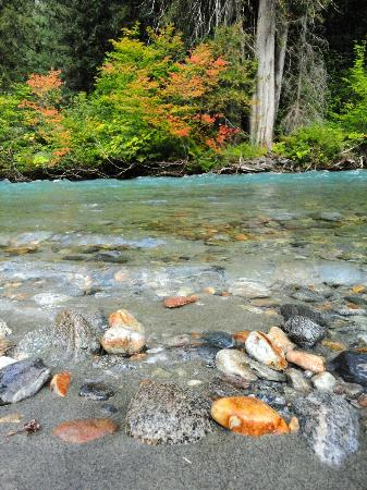 North Cascades Highway: Autumn Coulor, Glacier water on the Thunder Creek Trailhead