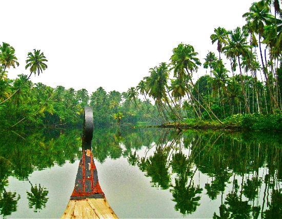 Big Banana Island Retreat: Au bord de la rivière ...