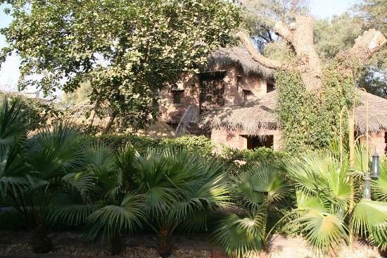 Ajit Bhawan: parc