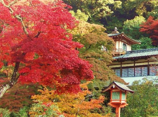 Mino, Japan: 箕面瀧安寺