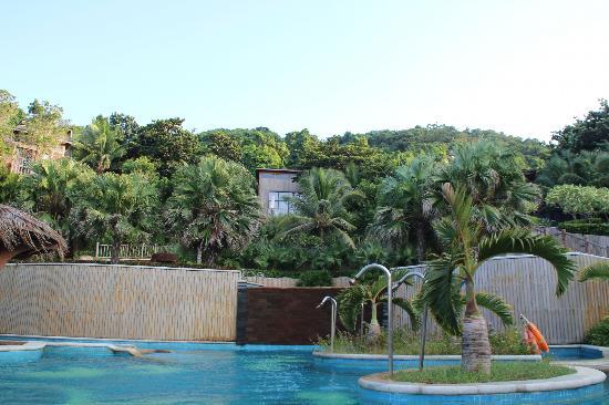 Wuzhizhou Island Resort: vue de la piscine sur les logements et la jungle