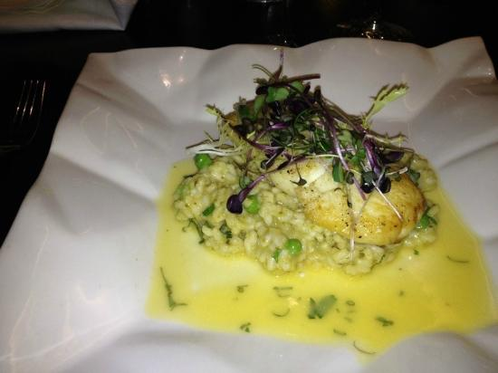 Palm Beach Casino: halibut on a risotto