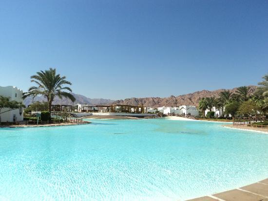 Dahab Resort: Algea in moat