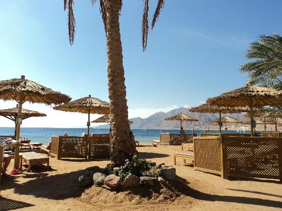 Dahab Resort: view of beach