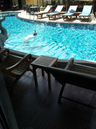 Palmyra Patong Resort: Pool access Deluxe - Walk into the pool right from your bed!