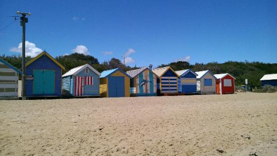Foto de brighton beach brighton beach boxes brighton tripadvisor for Colocation brighton