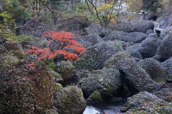 Daigo-machi, Japan: 小さな秋見つけた