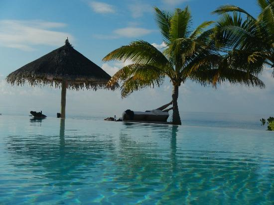 COMO Cocoa Island, The Maldives: The pool