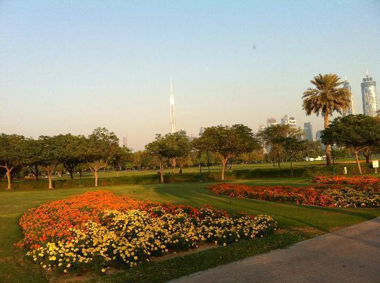 Safa Park Dubai All You Need To Know Before You Go With Photos Tripadvisor