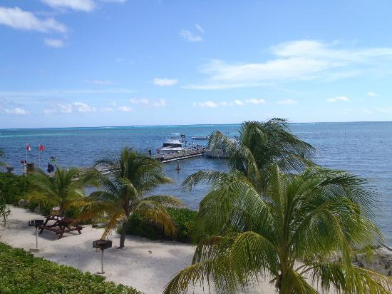 Compass Point Dive Resort: View of the dock and dive boats from the balcony of the room