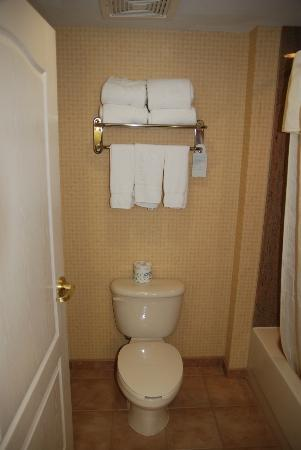 Homewood Suites by Hilton Edgewater - NYC Area: Toilet