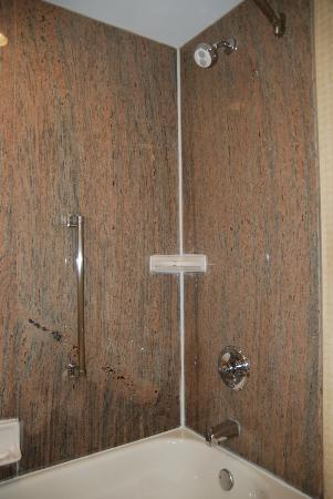 Homewood Suites by Hilton Edgewater - NYC Area: Shower