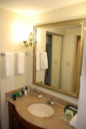 Homewood Suites by Hilton Edgewater - NYC Area : Mirror in bathroom