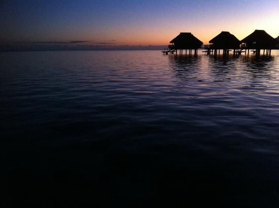 Sofitel Bora Bora Marara Beach Resort: Our sunrise view from our Bungalow