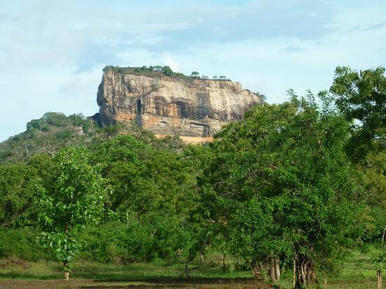 Jetwing Vil Uyana: Sigiriya Rock