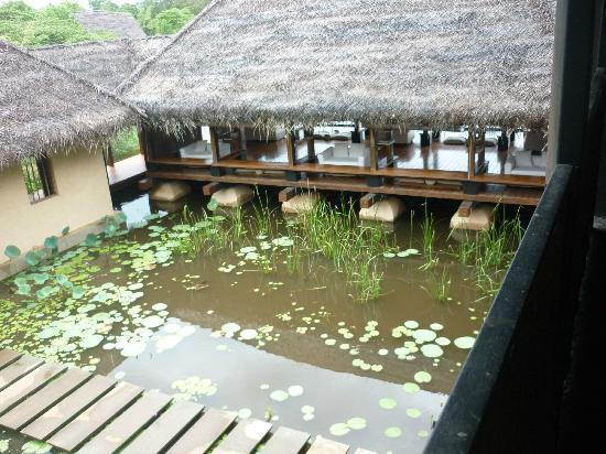 Jetwing Vil Uyana : The Lounge