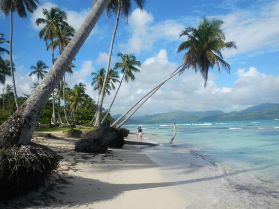 Das Kleine Paradies : Beach