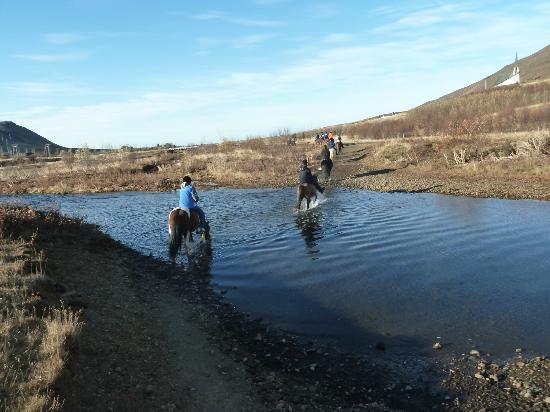 Laxnes Horse Farm: door het water lopen