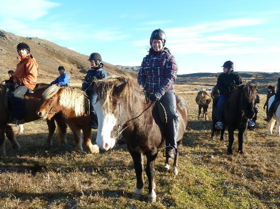 Laxnes Horse Farm: fototijd