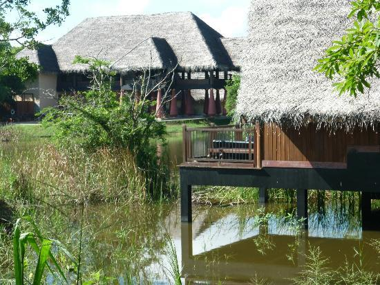 Jetwing Vil Uyana: View of the water villas