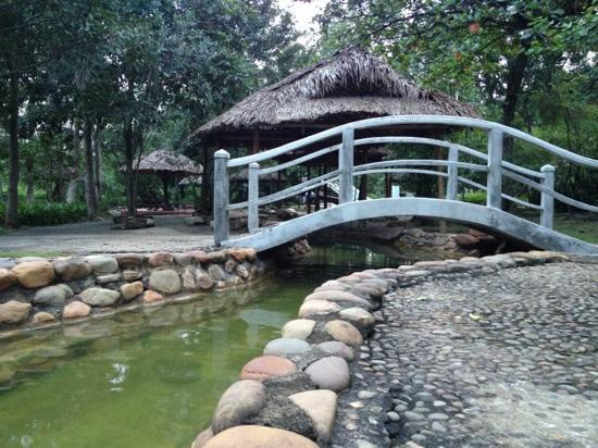 "Alba Hot Springs Resort: hot springs of thanh tan, in the ""VIP""/pricier package area"