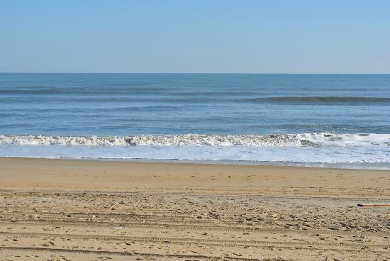 Outer Banks Beach Club: Surf