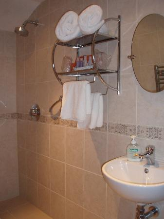Columba House Hotel: Wet room en-suite