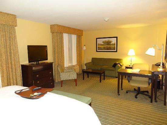 Hampton Inn & Suites Thousand Oaks: Room #201