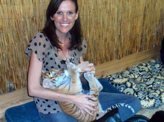 McCarthy's Wildlife Sanctuary: Feeding a 9-week old tiger cub.