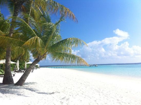 Vakarufalhi Island Resort: spiaggia