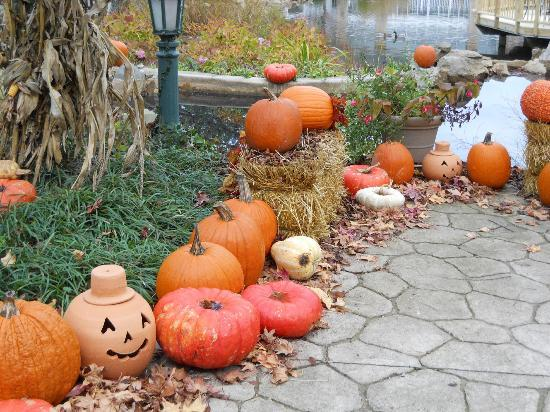 Cherry Valley Lodge: decorated for fall