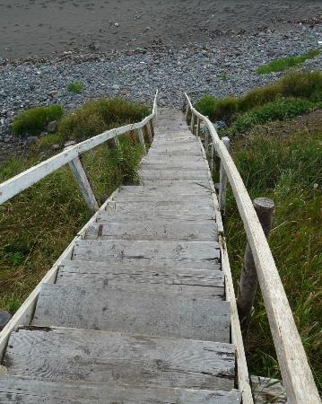 Bird Island Resort: Stairs down to the beach