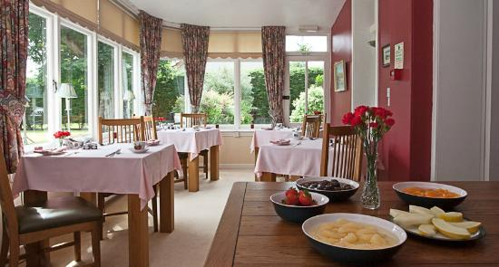 The Hermitage Guest House: Dining Room overlooking the Garden