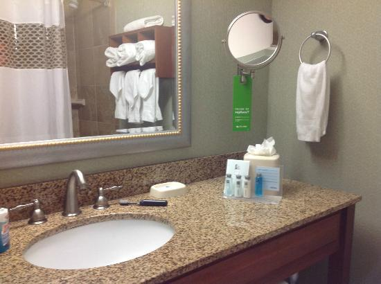 Hampton By Hilton Miami-Coconut Grove/Coral Gables: Salle de bains