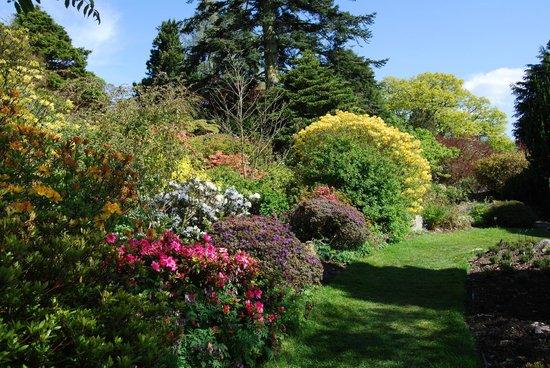 Holehird Gardens: Holehird in Spring 2012