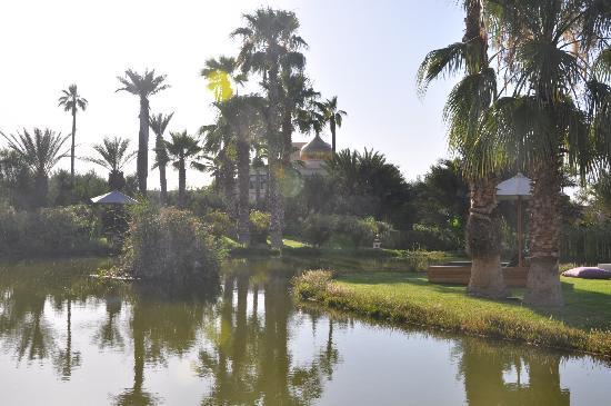 Palais Namaskar: Gardens
