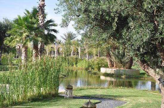 Palais Namaskar: Don't forget you DEET... Mosquitos like the place as much as we do