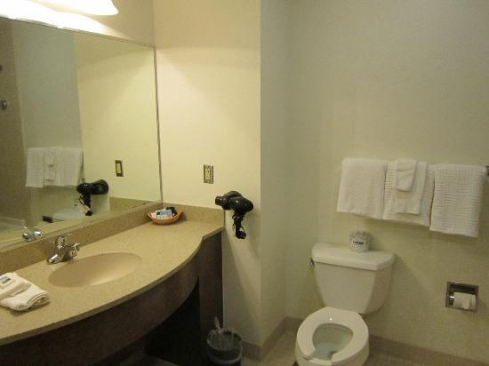 Twin Falls State Park: The bathroom was VERY spacious!
