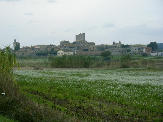 pueblo donde está ubicado: Palau-Sator