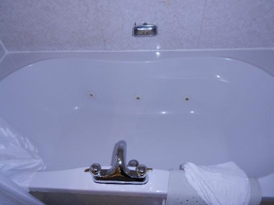 Britannia Country House Hotel & Spa: bath 