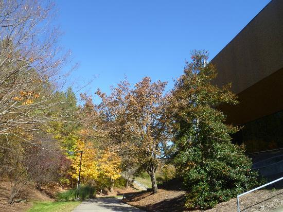 Dean E. Smith Center: Another outside view of Arena